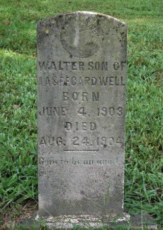 CARDWELL, WALTER - Hamblen County, Tennessee   WALTER CARDWELL - Tennessee Gravestone Photos
