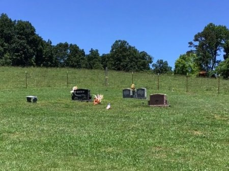 *CEMETERY VIEW,  - Hamblen County, Tennessee |  *CEMETERY VIEW - Tennessee Gravestone Photos