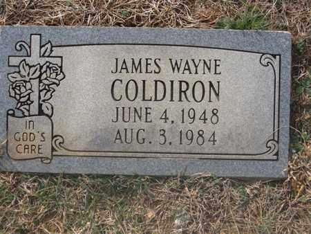 COLDIRON, JAMES WAYNE - Hamblen County, Tennessee | JAMES WAYNE COLDIRON - Tennessee Gravestone Photos