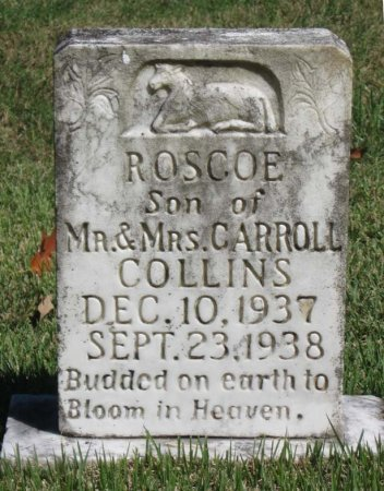 COLLINS, ROSCOE - Hamblen County, Tennessee | ROSCOE COLLINS - Tennessee Gravestone Photos