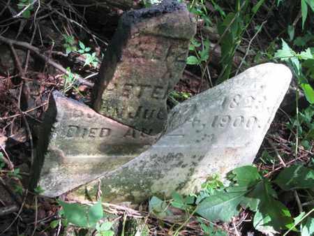 COUCH, ELIZABETH - Hamblen County, Tennessee | ELIZABETH COUCH - Tennessee Gravestone Photos