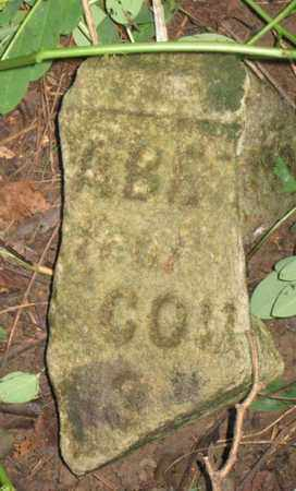 COUCH, ELIZABETH (CLOSE UP) - Hamblen County, Tennessee | ELIZABETH (CLOSE UP) COUCH - Tennessee Gravestone Photos