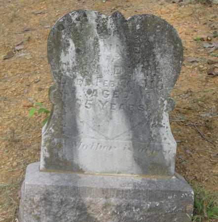 DAVIS, ANNIE - Hamblen County, Tennessee | ANNIE DAVIS - Tennessee Gravestone Photos