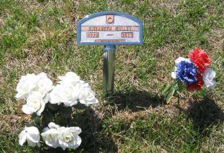 GULLEY, ELIZABETH NADINE - Hamblen County, Tennessee   ELIZABETH NADINE GULLEY - Tennessee Gravestone Photos
