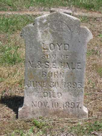 HALE, LOYD - Hamblen County, Tennessee   LOYD HALE - Tennessee Gravestone Photos