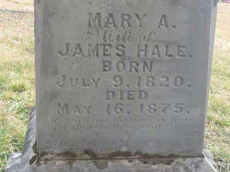 HALE, MARY ANNE (CLOSE UP) - Hamblen County, Tennessee | MARY ANNE (CLOSE UP) HALE - Tennessee Gravestone Photos