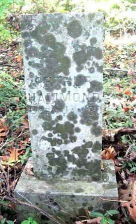 HAMMOND, ARTHUR - Hamblen County, Tennessee | ARTHUR HAMMOND - Tennessee Gravestone Photos