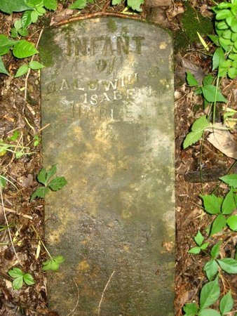 HARLE, INFANT - Hamblen County, Tennessee | INFANT HARLE - Tennessee Gravestone Photos