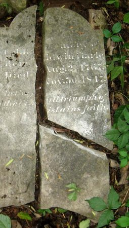 HARLE, SR., BALDWIN, COL. - Hamblen County, Tennessee | BALDWIN, COL. HARLE, SR. - Tennessee Gravestone Photos