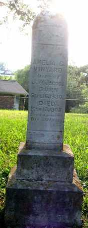 JACOBS, AMELIA G. - Hamblen County, Tennessee | AMELIA G. JACOBS - Tennessee Gravestone Photos