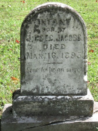 JACOBS, INFANT SON - Hamblen County, Tennessee | INFANT SON JACOBS - Tennessee Gravestone Photos