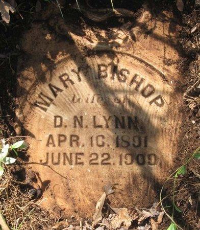 LYNN, MARY - Hamblen County, Tennessee   MARY LYNN - Tennessee Gravestone Photos