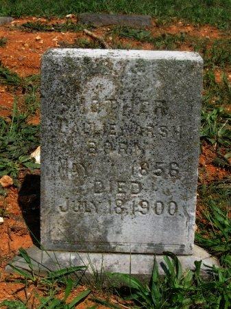 MARSH, CALLIE - Hamblen County, Tennessee   CALLIE MARSH - Tennessee Gravestone Photos