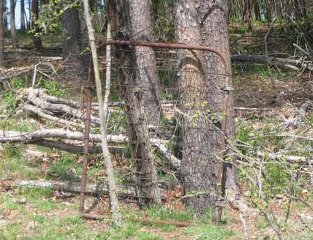 *MCMINN-MCKINNEY CEMETERY INFO,  - Hamblen County, Tennessee |  *MCMINN-MCKINNEY CEMETERY INFO - Tennessee Gravestone Photos