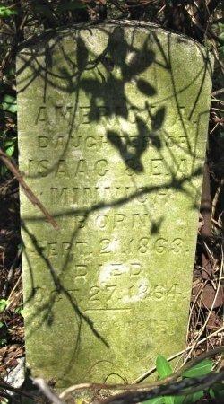 MINNICH, AMERICA A. - Hamblen County, Tennessee | AMERICA A. MINNICH - Tennessee Gravestone Photos