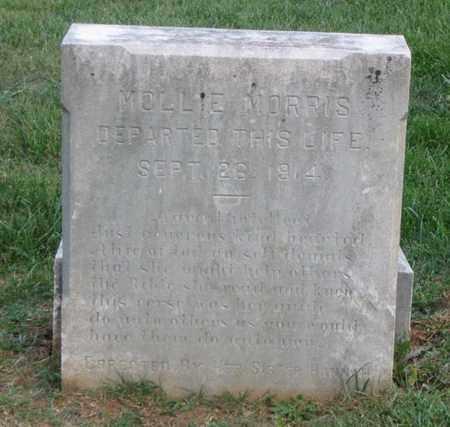 MORRIS, MOLLIE - Hamblen County, Tennessee | MOLLIE MORRIS - Tennessee Gravestone Photos