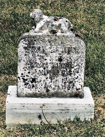 MOYERS, WANDA GERALDINE - Hamblen County, Tennessee | WANDA GERALDINE MOYERS - Tennessee Gravestone Photos