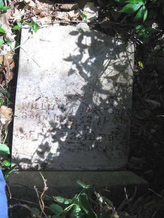 ROBERTSON, WILLIAM - Hamblen County, Tennessee | WILLIAM ROBERTSON - Tennessee Gravestone Photos