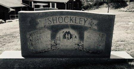 SHOCKLEY, DELIA - Hamblen County, Tennessee | DELIA SHOCKLEY - Tennessee Gravestone Photos