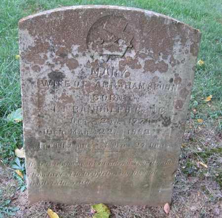 SMITH SPOON, MARY POLLY - Hamblen County, Tennessee | MARY POLLY SMITH SPOON - Tennessee Gravestone Photos