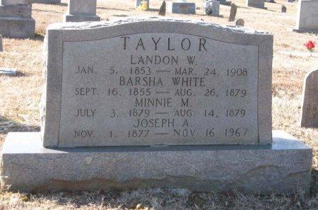 TAYLOR, BARSHA - Hamblen County, Tennessee   BARSHA TAYLOR - Tennessee Gravestone Photos