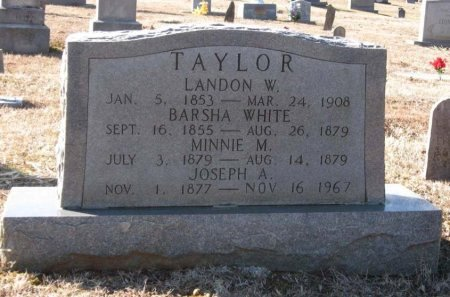 TAYLOR, LANDON W. - Hamblen County, Tennessee | LANDON W. TAYLOR - Tennessee Gravestone Photos