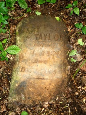 TAYLOR, MARY - Hamblen County, Tennessee | MARY TAYLOR - Tennessee Gravestone Photos