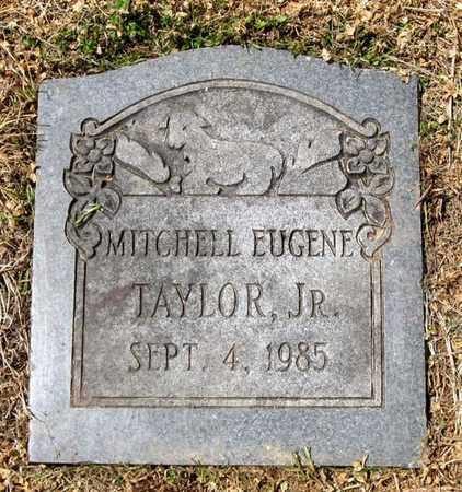 TAYLOR, MITCHELL EUGENE (JR.) - Hamblen County, Tennessee | MITCHELL EUGENE (JR.) TAYLOR - Tennessee Gravestone Photos