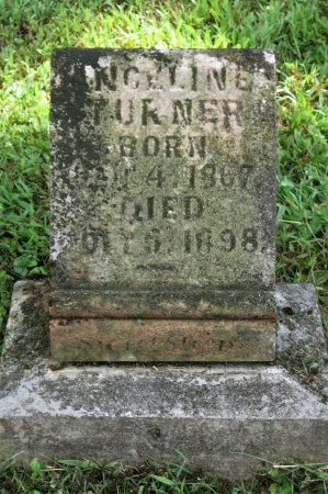 TURNER, ANGELINE - Hamblen County, Tennessee | ANGELINE TURNER - Tennessee Gravestone Photos