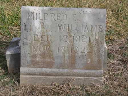 WILLIAMS, MILDRED E. - Hamblen County, Tennessee | MILDRED E. WILLIAMS - Tennessee Gravestone Photos