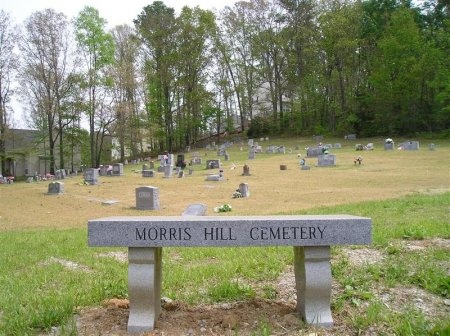 *MORRIS HILL OVERVIEW,   - Hamilton County, Tennessee     *MORRIS HILL OVERVIEW - Tennessee Gravestone Photos