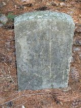 NELSON, COLEMAN - Hamilton County, Tennessee | COLEMAN NELSON - Tennessee Gravestone Photos