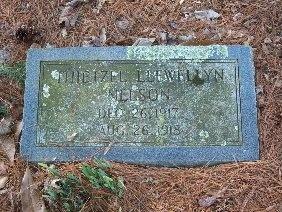 NELSON, THIETZEL LLEWELLYN - Hamilton County, Tennessee | THIETZEL LLEWELLYN NELSON - Tennessee Gravestone Photos