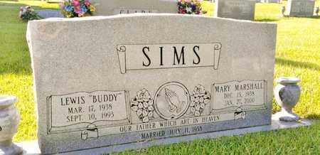 MARSHALL SIMS, MARY - Hamilton County, Tennessee   MARY MARSHALL SIMS - Tennessee Gravestone Photos