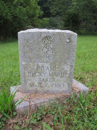 BAKER, BECKY MARIE - Hancock County, Tennessee | BECKY MARIE BAKER - Tennessee Gravestone Photos