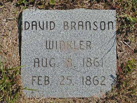 WINKLER, DAVID BRANSON - Hancock County, Tennessee | DAVID BRANSON WINKLER - Tennessee Gravestone Photos