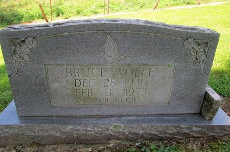 WOLFE, BRUCE - Hancock County, Tennessee | BRUCE WOLFE - Tennessee Gravestone Photos
