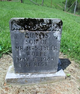 WOLFE, CURTIS - Hancock County, Tennessee | CURTIS WOLFE - Tennessee Gravestone Photos