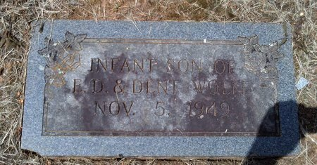 WOLFE, INFANT - Hancock County, Tennessee | INFANT WOLFE - Tennessee Gravestone Photos
