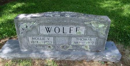 WOLFE, THOMAS - Hancock County, Tennessee | THOMAS WOLFE - Tennessee Gravestone Photos
