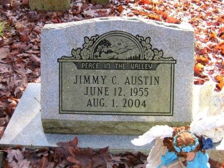 AUSTIN, JIMMY C. - Hardin County, Tennessee | JIMMY C. AUSTIN - Tennessee Gravestone Photos