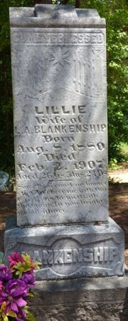 BLANKENSHIP, LILLIE - Hardin County, Tennessee | LILLIE BLANKENSHIP - Tennessee Gravestone Photos