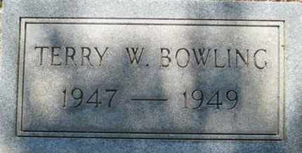 BOWLING, TERRY WOODROW - Hardin County, Tennessee | TERRY WOODROW BOWLING - Tennessee Gravestone Photos