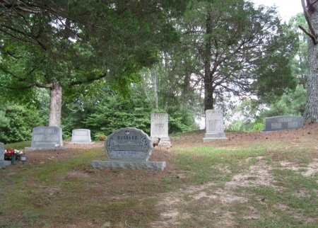 *CEMETERY VIEW,  - Hardin County, Tennessee |  *CEMETERY VIEW - Tennessee Gravestone Photos