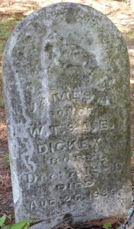 DICKEY, JAMES A - Hardin County, Tennessee | JAMES A DICKEY - Tennessee Gravestone Photos