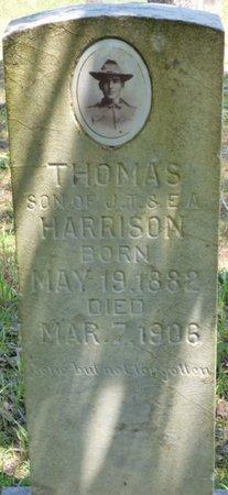 HARRISON, THOMAS - Hardin County, Tennessee   THOMAS HARRISON - Tennessee Gravestone Photos