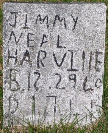 HARVILLE, JIMMY NEAL - Hardin County, Tennessee | JIMMY NEAL HARVILLE - Tennessee Gravestone Photos