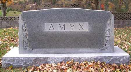 AMYX, FAMILY STONE - Hawkins County, Tennessee | FAMILY STONE AMYX - Tennessee Gravestone Photos