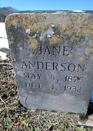 ANDERSON, JANE - Hawkins County, Tennessee | JANE ANDERSON - Tennessee Gravestone Photos