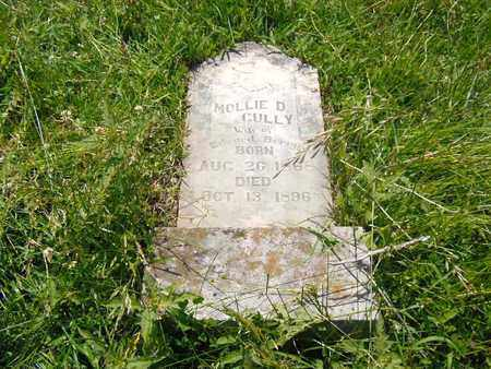 BERRY, MOLLIE D. - Hawkins County, Tennessee | MOLLIE D. BERRY - Tennessee Gravestone Photos